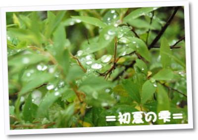 [photo11224666]shizukuimage.jpg
